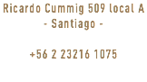 Ricardo Cummig 509 local A - Santiago - +56 2 23216 1075